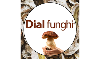 Dial Funghi